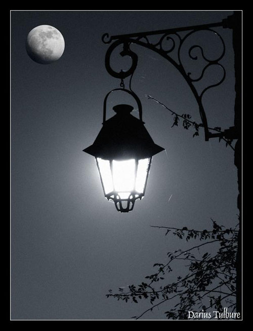 آخرین لامپ
